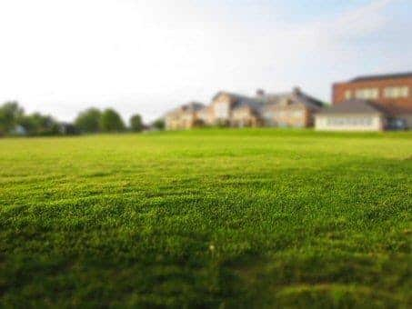 grassy vacant lot in suburbs